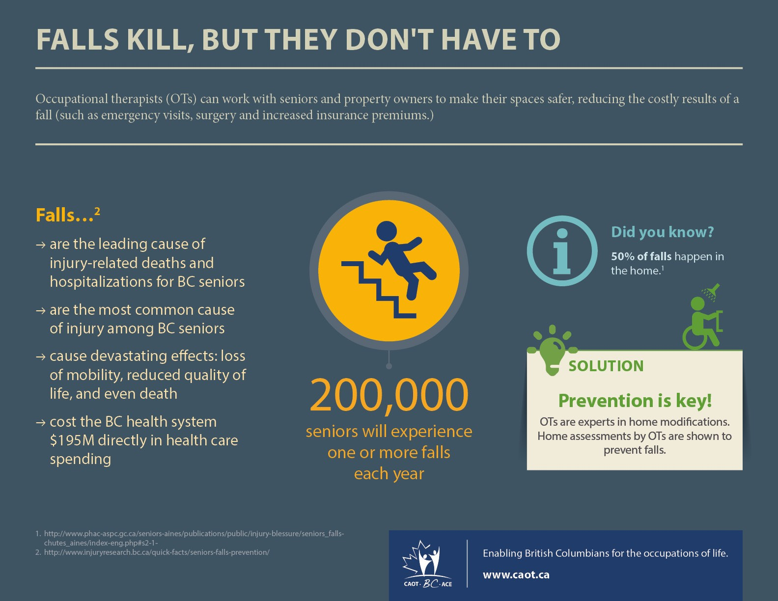 Falls Kill, But They Don't Have To Inforgraphic